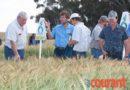 Agri Malmesbury vereer produsente